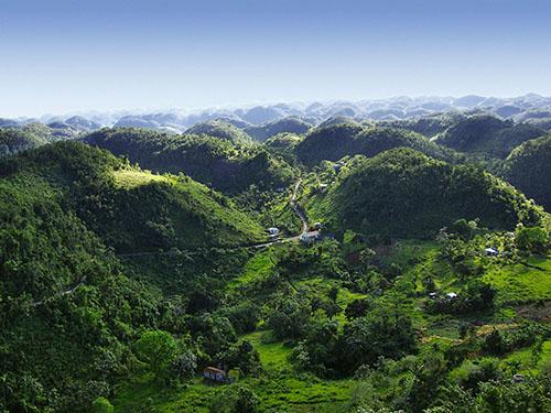 jamaica-blue-mountains