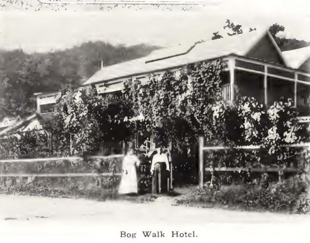 bog-walk-hotel